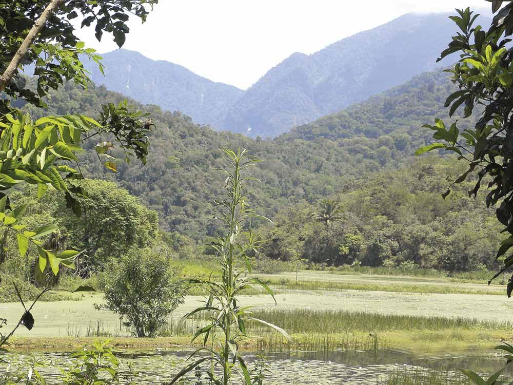O Prodetur foi criado para apoiar reservas privadas e conciliar esse apoio com o desenvolvimento turístico
